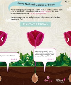 Caribou Coffee, Facebook, breast cancer, tulip, garden, Amy Erickson